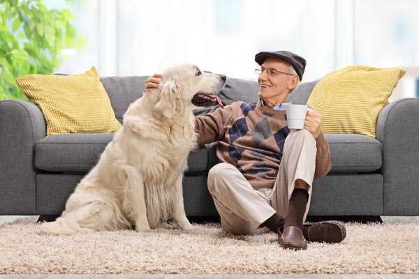 5 ways animals benefit the elderly